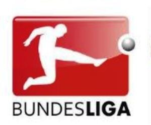 German Bundesliga Matchday 14 - November 27-28, 2012.