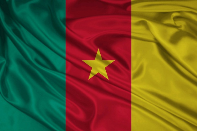 CAN 2015: Cameroon's Team Profile