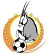 Namibia Premier League